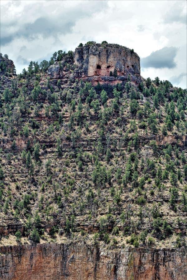 Salt河峡谷自然保护区, Tonto国家森林,希拉县,亚利桑那,美国 库存照片