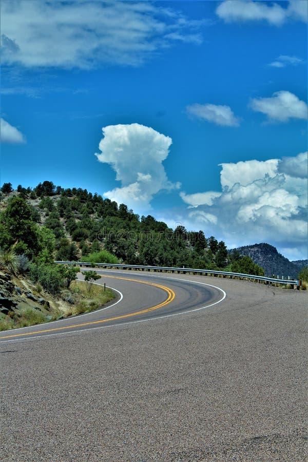 Salt河峡谷自然保护区, Tonto国家森林,希拉县,亚利桑那,美国 免版税库存图片