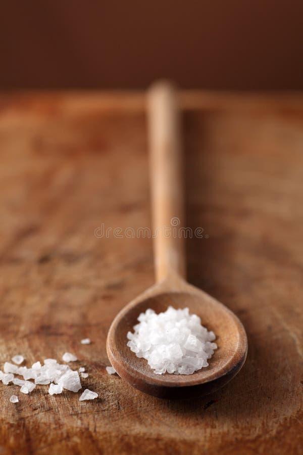 Download Salt stock photo. Image of cristalli, insaporire, salted - 13702814