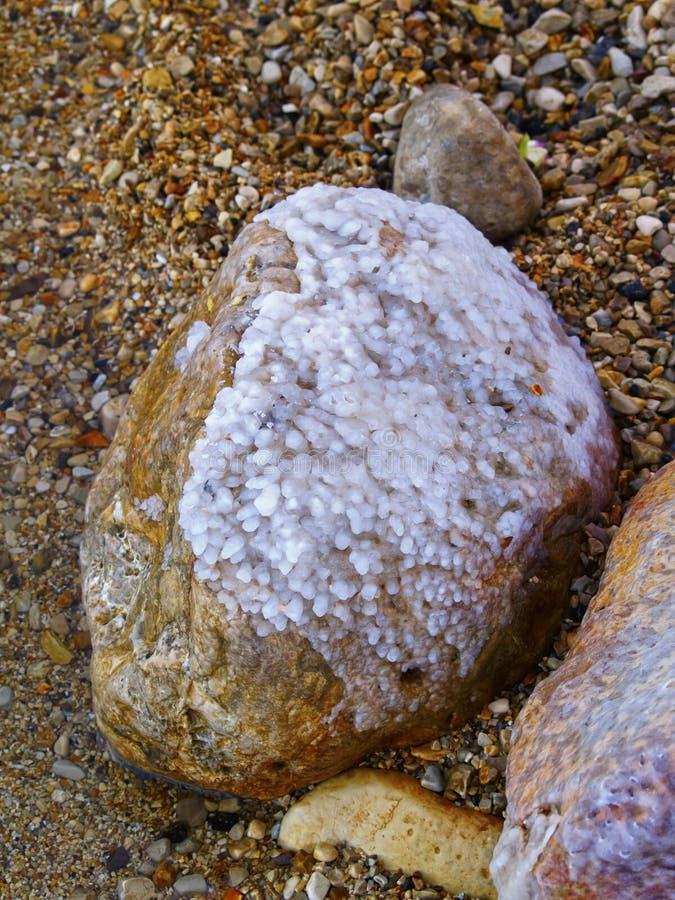 Download Salt Royalty Free Stock Photos - Image: 26451528