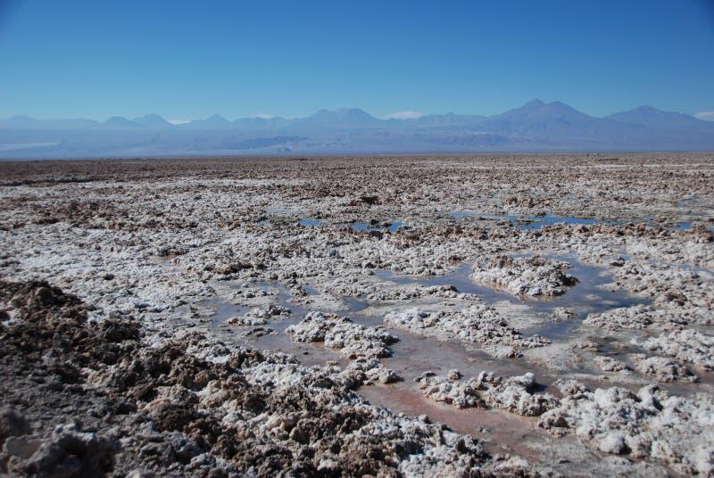 Salt in Atacama desert royalty free stock photo