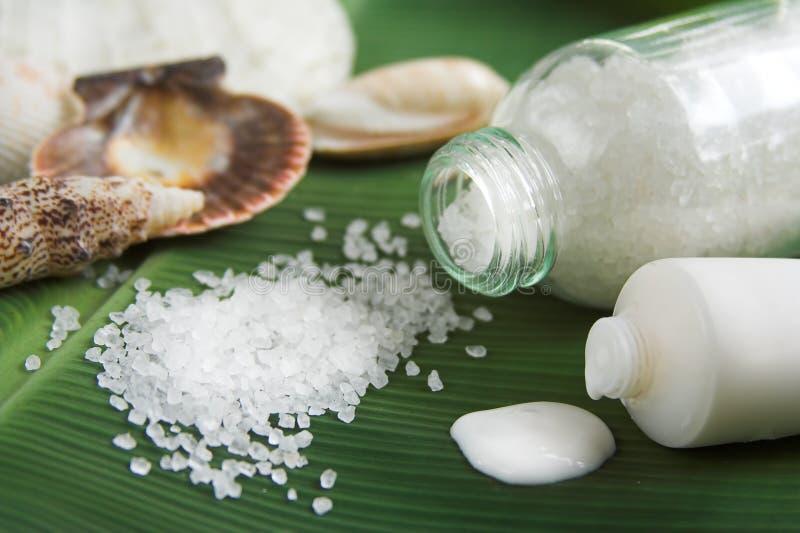 salt badlotion arkivfoton
