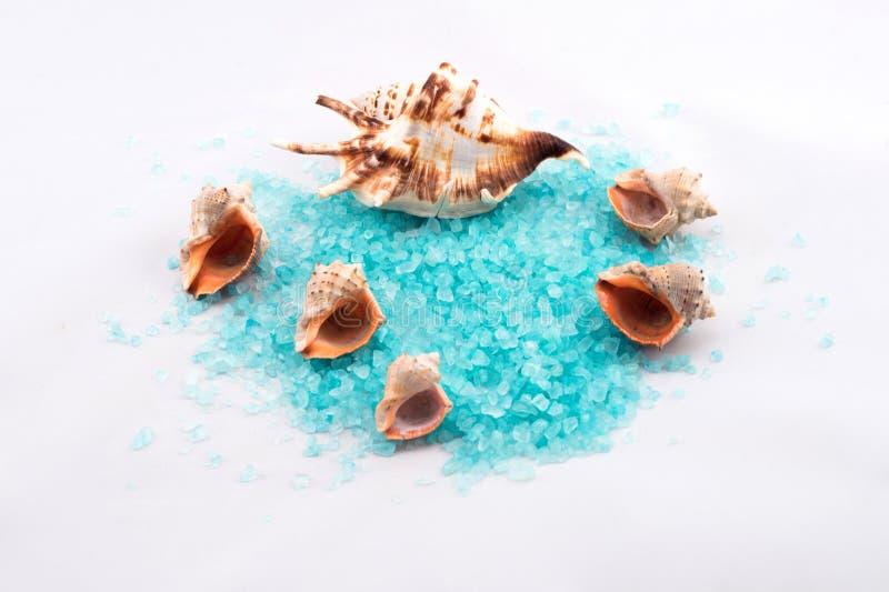 Salt blåttbad fotografering för bildbyråer