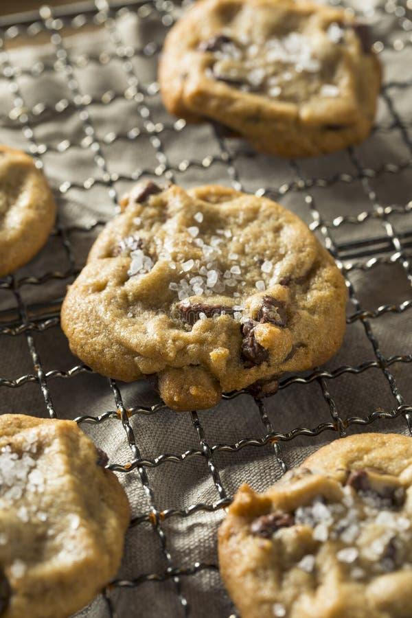 Salt choklad Chip Cookies för hemlagat hav arkivfoto