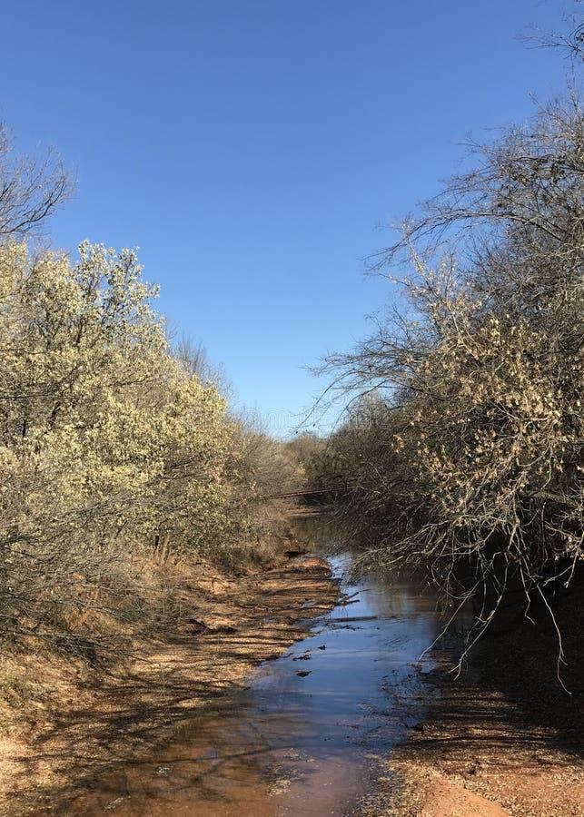 Free Salt Creek Stock Photo - 131871280