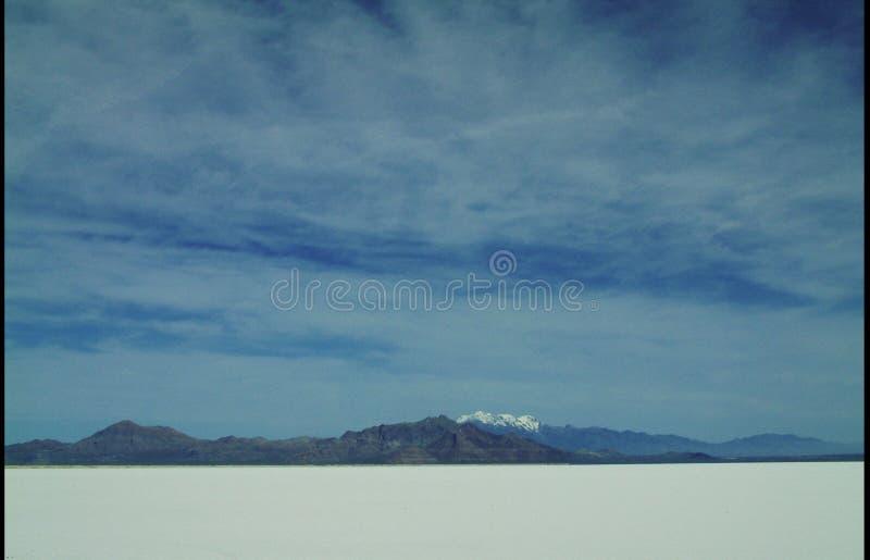 salt delar arkivbilder