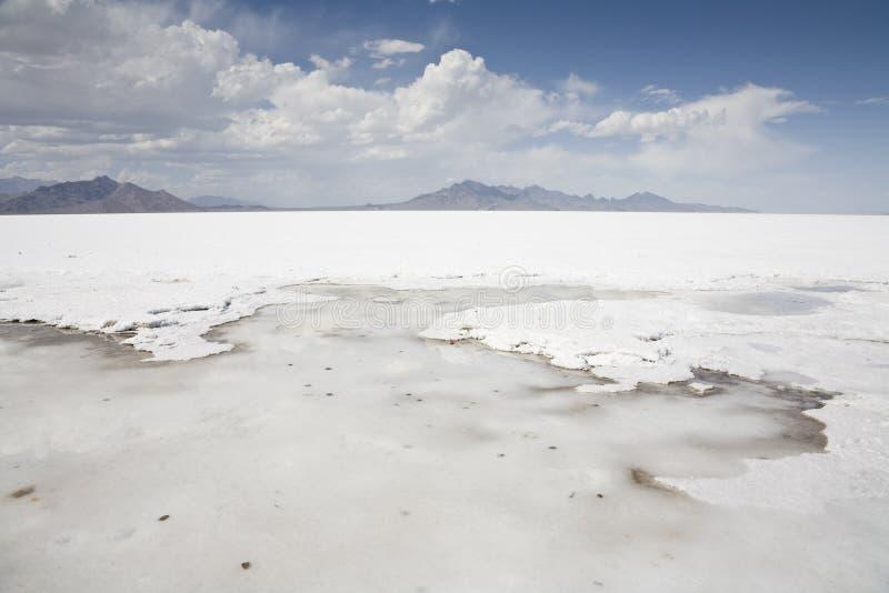 salt delar arkivfoto