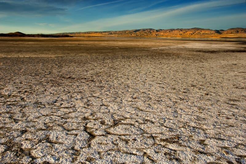 salt delar för öken royaltyfri bild