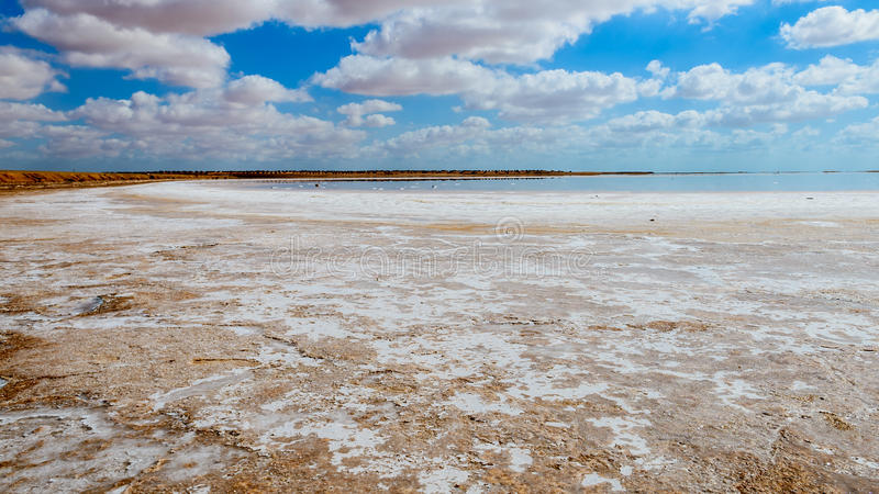 Salt desert. This is a nice view of Salt desert situated in Tunisia,africa stock photos