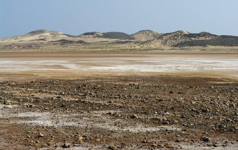 Salt desert in Oman royalty free stock images