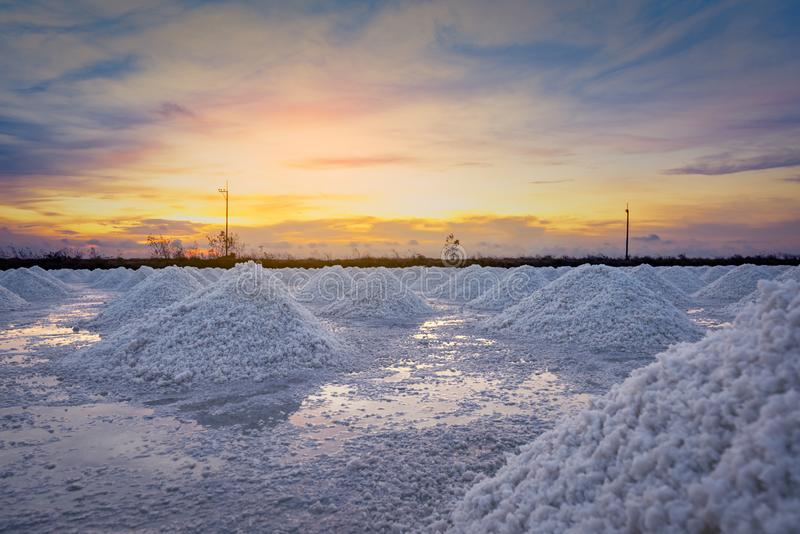 Salt farm in the morning with sunrise sky. Organic sea salt. Evaporation and crystallization of sea water. Raw material of salt. Industrial. Sodium Chloride stock image