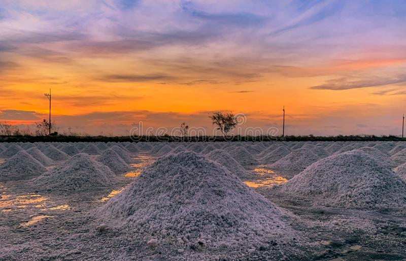 Salt farm in the morning with sunrise sky. Organic sea salt. Evaporation and crystallization of sea water. Raw material of salt. Industrial. Sodium Chloride stock images