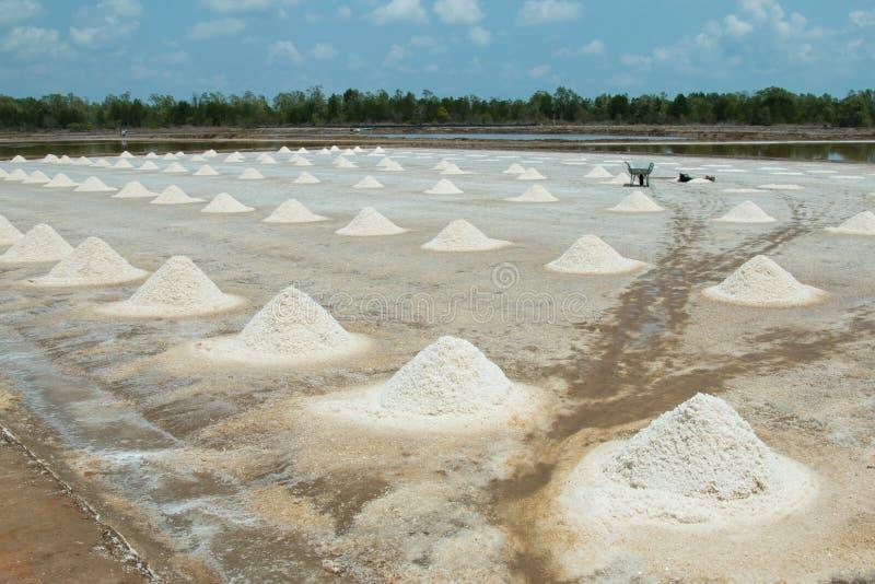 Salt farmers stock photos