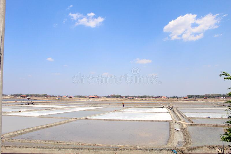 Salt field view in summer. Salt field view for salt production in summer. good weather to produce good quality salt stock photo