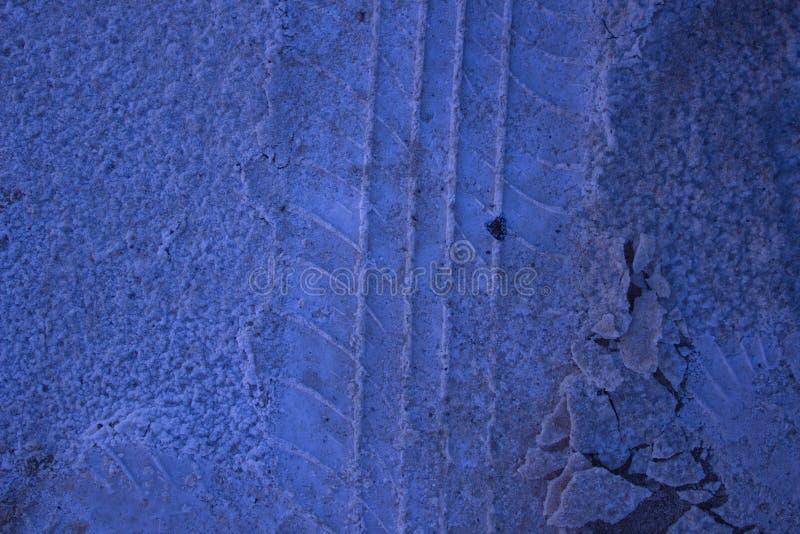 Salt fotspår i sanden royaltyfri fotografi