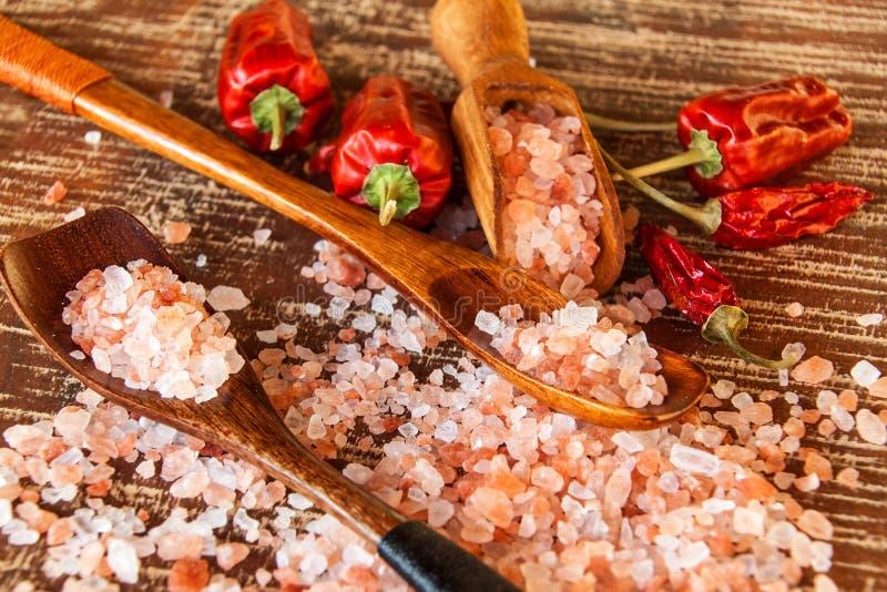 salt himalayan pink Kök saltar och chilipeppar Kryddor på galler royaltyfri foto