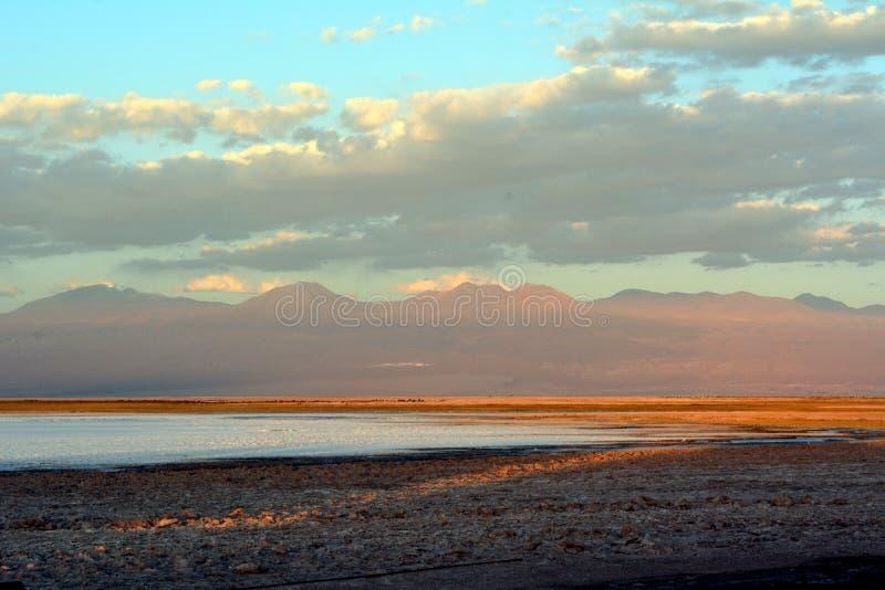 Salt lagoon Cejar stock photography