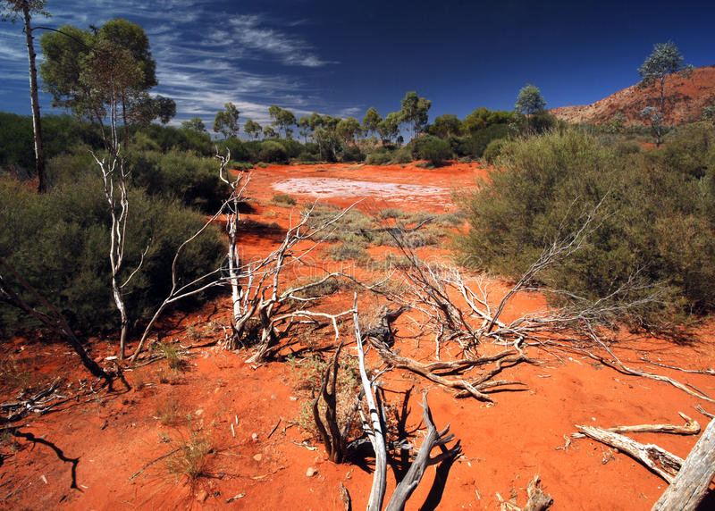 Salt Lake in der australischen Wüste lizenzfreies stockfoto
