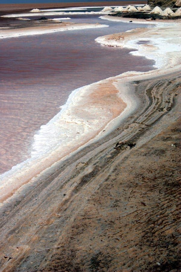 Free Salt Lake Desert Royalty Free Stock Photos - 10593678