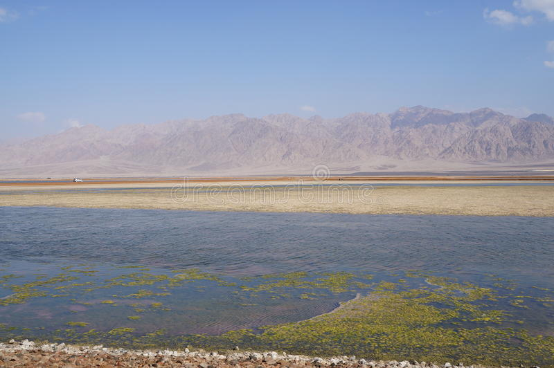 Salt lake near Eilat. Israel royalty free stock photos