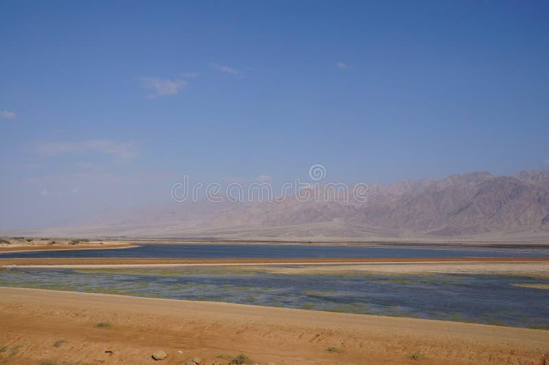 Salt lake near Eilat. Israel stock photography