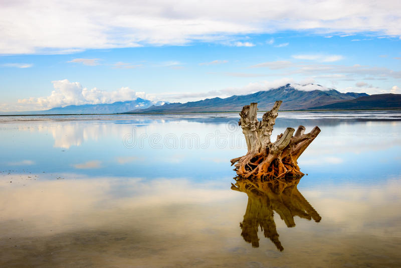 Salt Lake-Panorama lizenzfreies stockbild