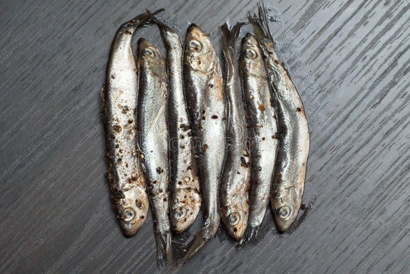 Salt liten stackare fisk på burk arkivbilder