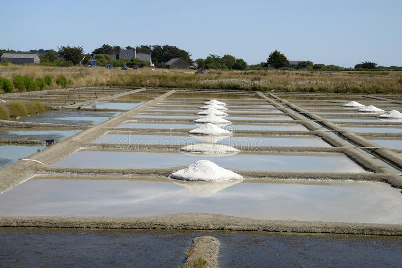 Salt marshes of Guérande royalty free stock photography
