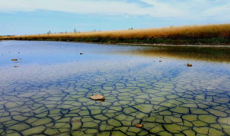 Salt marshes stock image