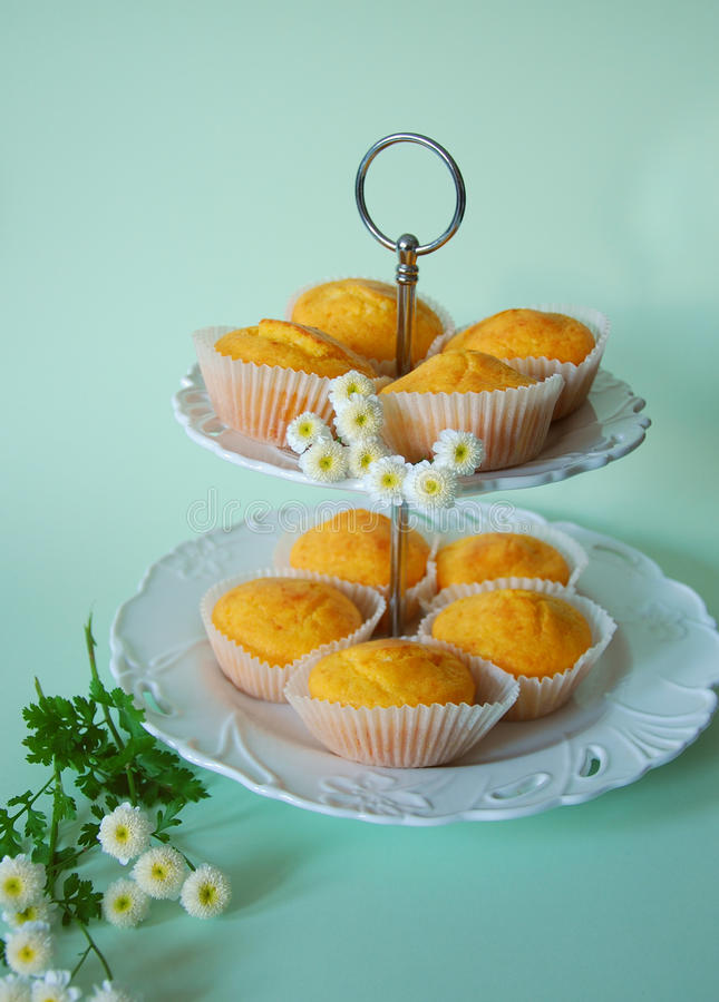 Salt muffins stock photos