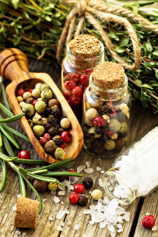 Salt och olika sorter för rosmarinar, av peppar royaltyfria foton