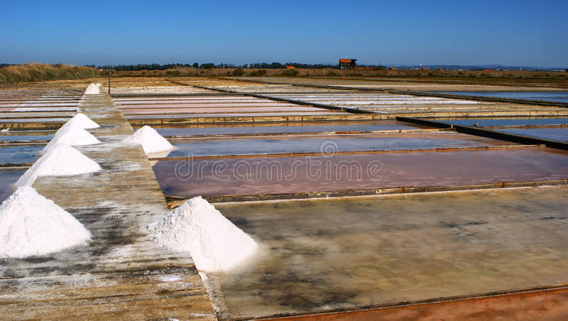 Download Salt Pans On A Saline Exploration Stock Image - Image of agriculture, pile: 87531213