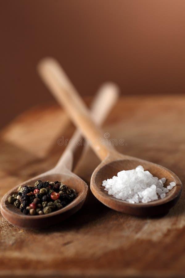 salt peppar royaltyfri foto