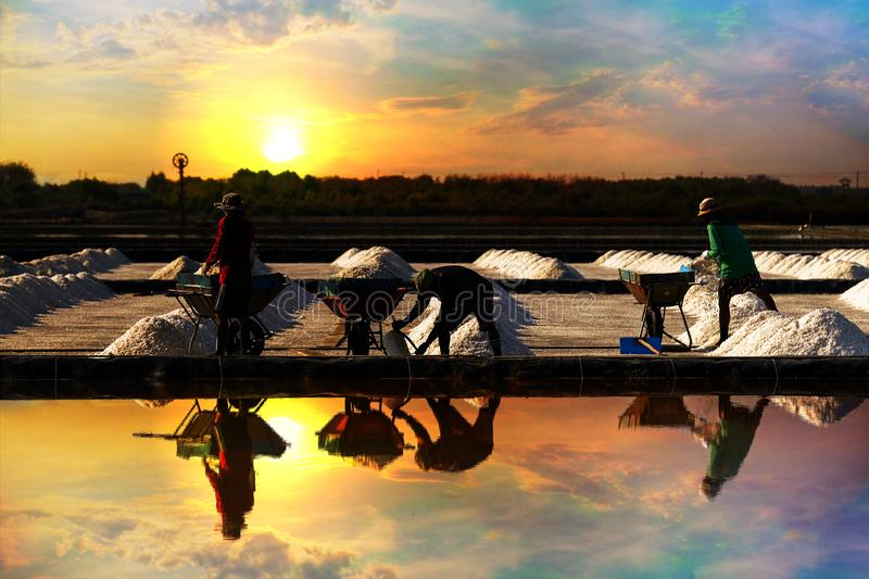 Salt pile in the salt pan in the rural areas at sunrise. Salt pile in the salt pan in the rural areas of Thailand at sunrise royalty free stock photos