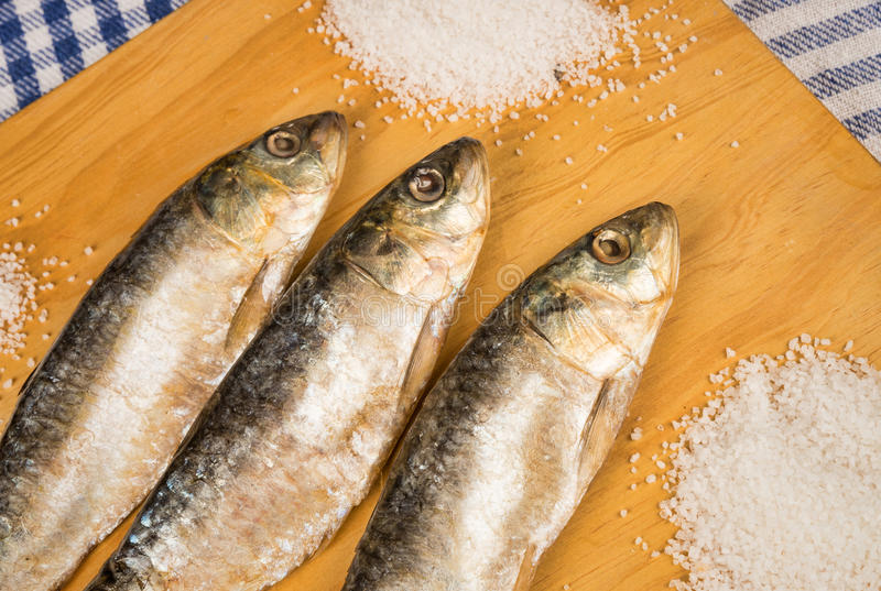 Salt preserved sardines stock photo
