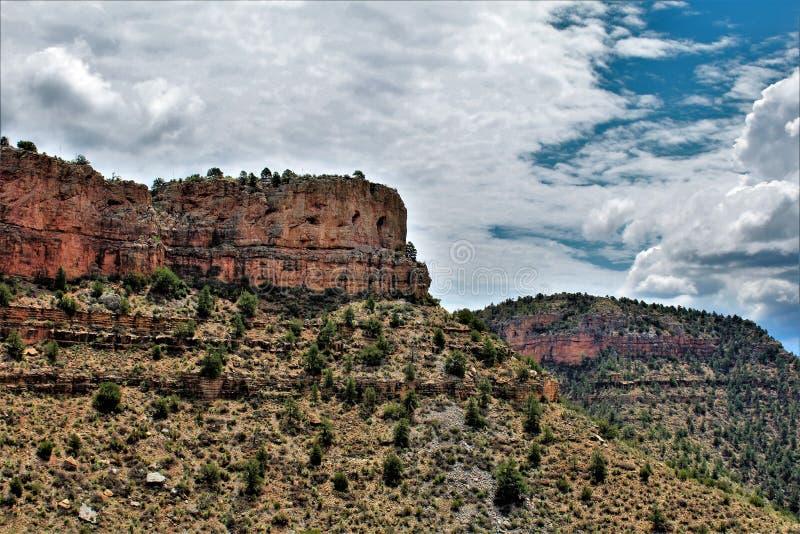Salt River Schlucht-Wildnisgebiet, Tonto-staatlicher Wald, Gila County, Arizona, Vereinigte Staaten lizenzfreie stockbilder