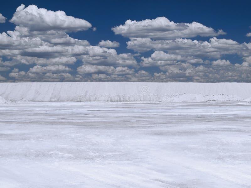 Salt See stockfotografie