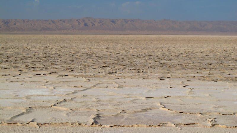 Salt See lizenzfreie stockfotos