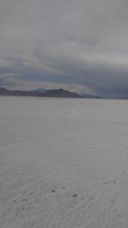 Salt See stockbilder