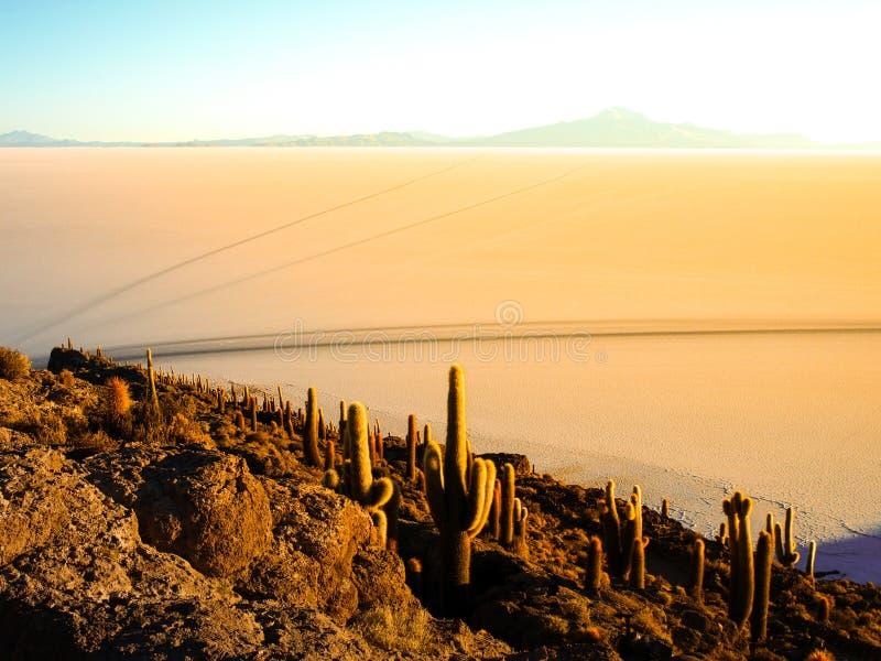 Salt slätt för soluppgång och Uyuni royaltyfri bild