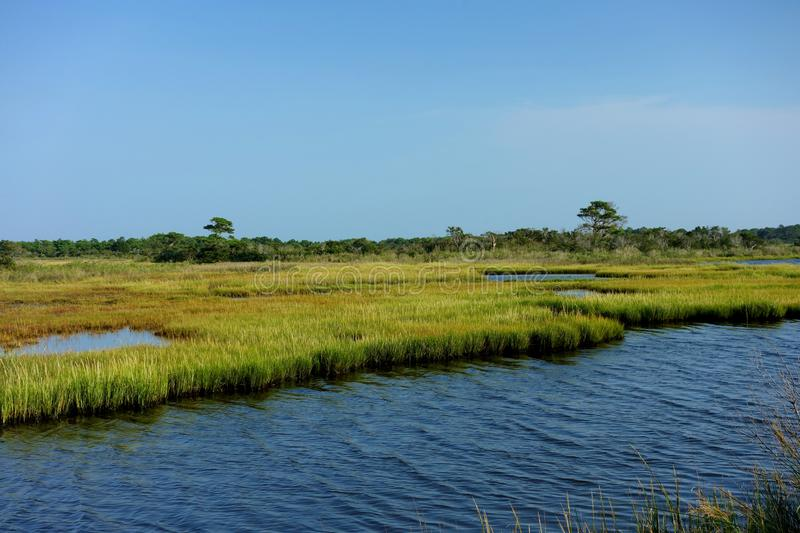 Salt Water Wetlands of Chincoteague Bay stock photography