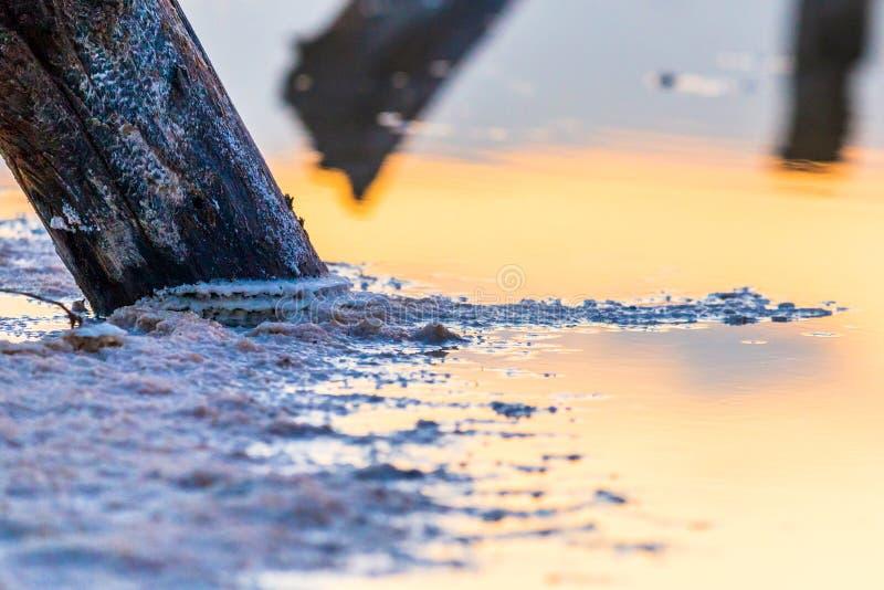 Salt on wooden log in water salt lake. Salt Lake Baskunchak, Russia. White, landscape, reflection, natural, nature, sky, summer, tourism, travel, mineral stock photography