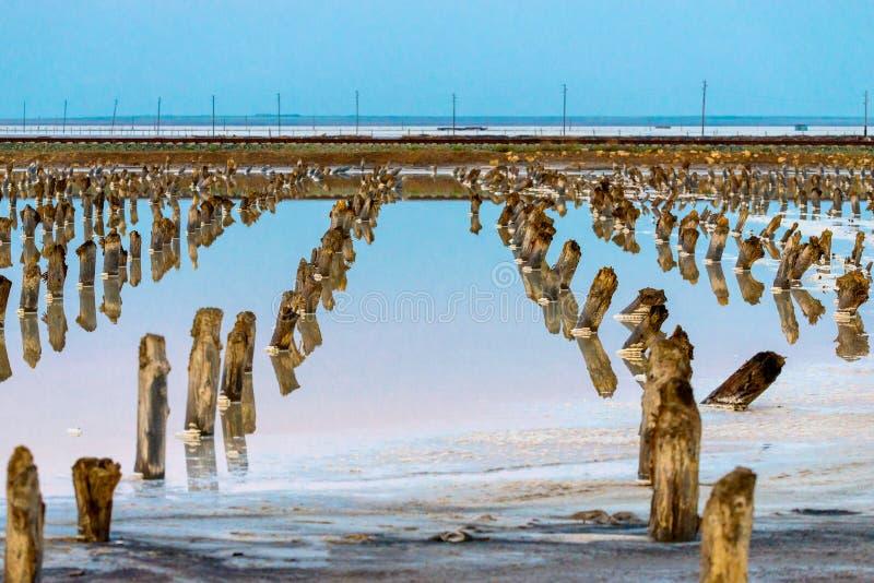 Salt on wooden log in water salt lake. Salt Lake Baskunchak, Russia. White, landscape, reflection, natural, nature, sky, summer, tourism, travel, mineral royalty free stock photo