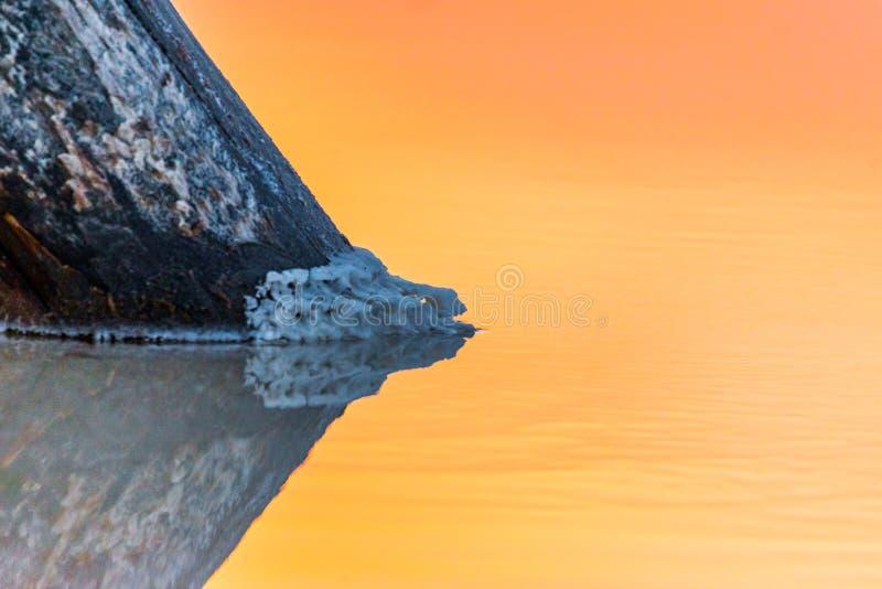 Salt on wooden log in water salt lake. Salt Lake Baskunchak, Russia. White, landscape, reflection, natural, nature, sky, summer, tourism, travel, mineral stock images