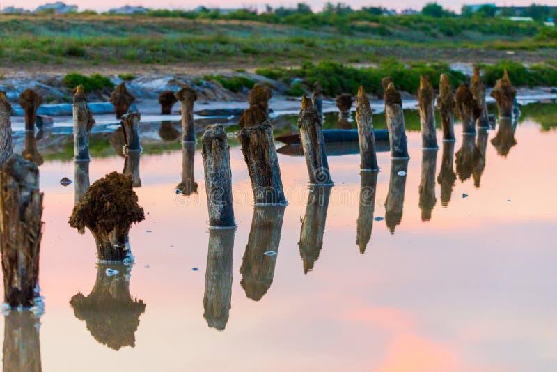 Salt on wooden log in water salt lake. Salt Lake Baskunchak, Russia. White, landscape, reflection, natural, nature, sky, summer, tourism, travel, mineral stock image