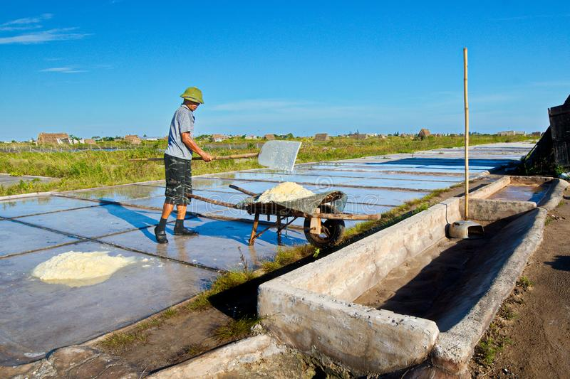 Salt workers working on salt fields. This location used to be the largest salt production site in Northern Vietnam but now almost stock photo