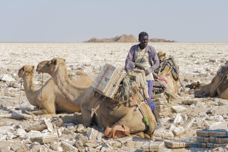 Salta gruvarbetaren som arbetar i, saltar slättar i den Danakil fördjupningen i Etiopien arkivbild