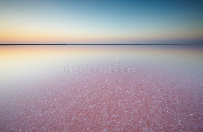 Salta och saltvatten av en rosa sjö som färgas av den microalgaeDunaliella salinaen på solnedgången fotografering för bildbyråer
