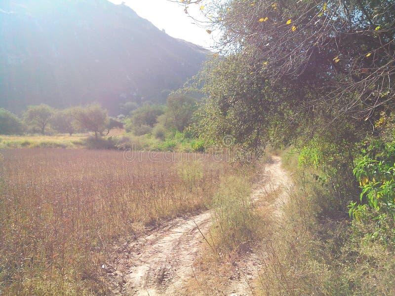 Salta områdeskönhet arkivbild