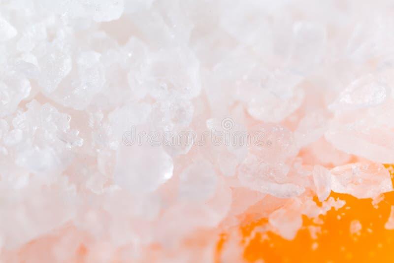 Salta på en orange bakgrund Makro arkivfoton